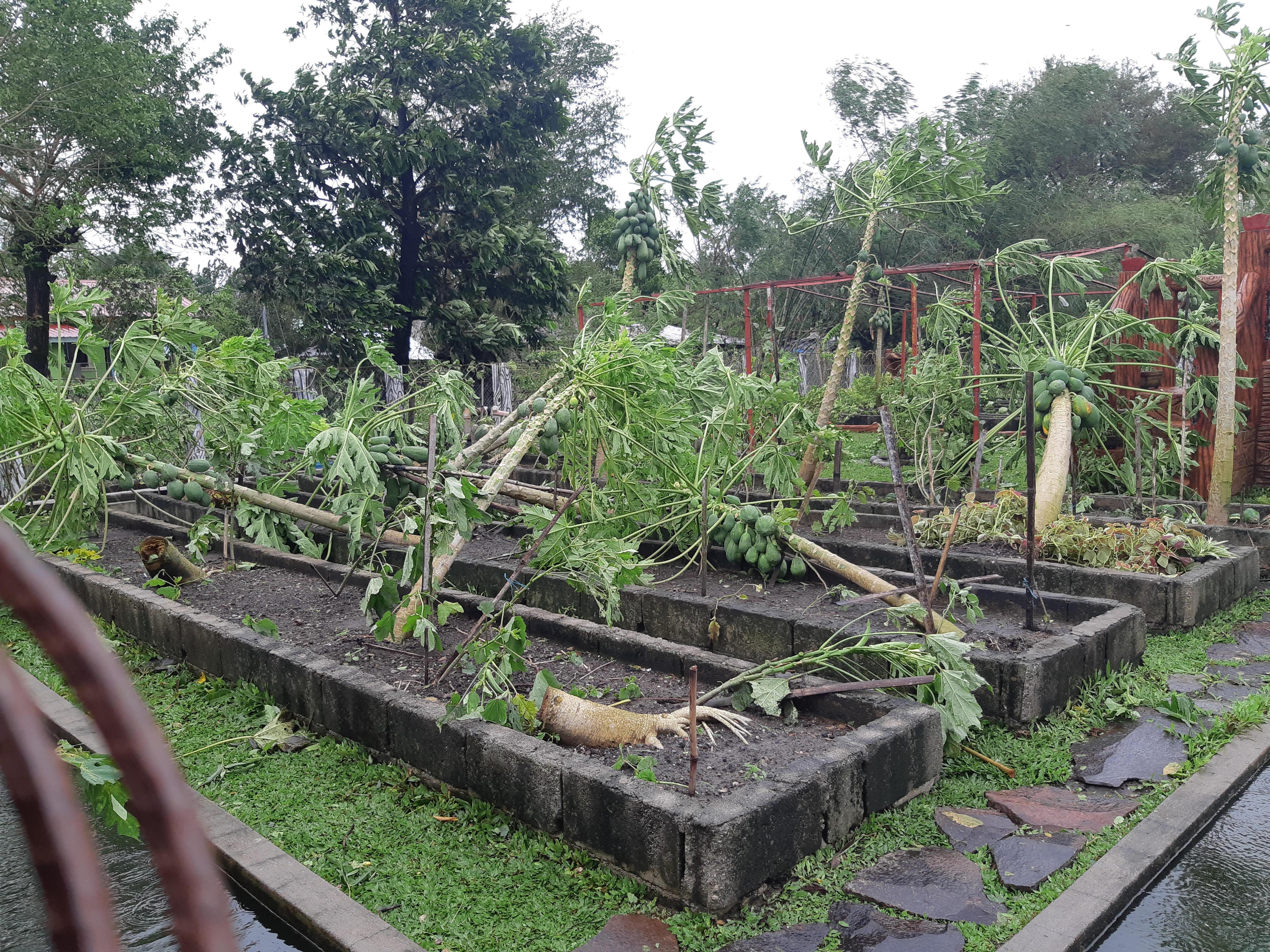 Taifun Philippinen Nov. 2020