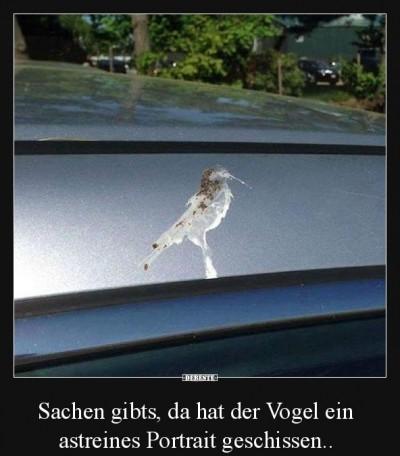 Kunstvoller Vogelschiss